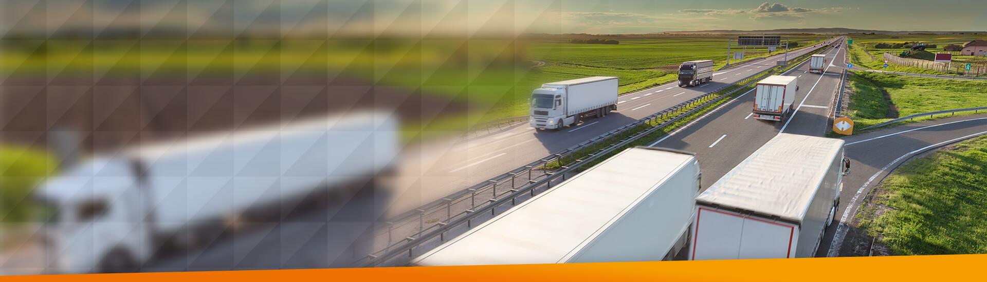 ELO ECM for transportation and logistics